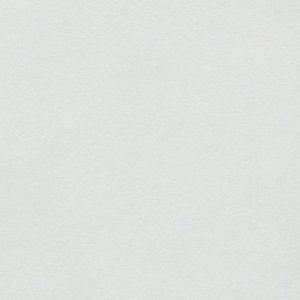 1011 Кромка с клеем БЕЛЫЙ глянец 32 мм